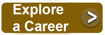 Explore a Career Icon