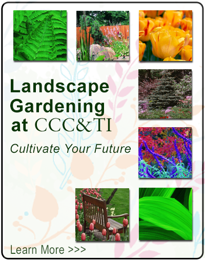 Landscape Gardening at CCC&TI - cultivate your future