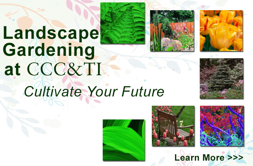 Landscape Gardening at CCC&TI - Culivate your future